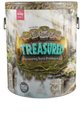 Treasured: Discovering You're Priceless to God Ultimate Starter Kit Plus Digital